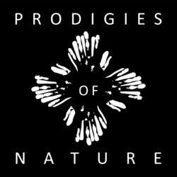 Prodigies Of Nature